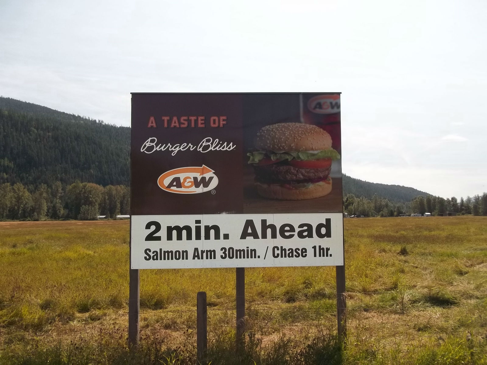 Billboards-Custom Made-A&W